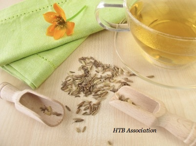 fennel_tea
